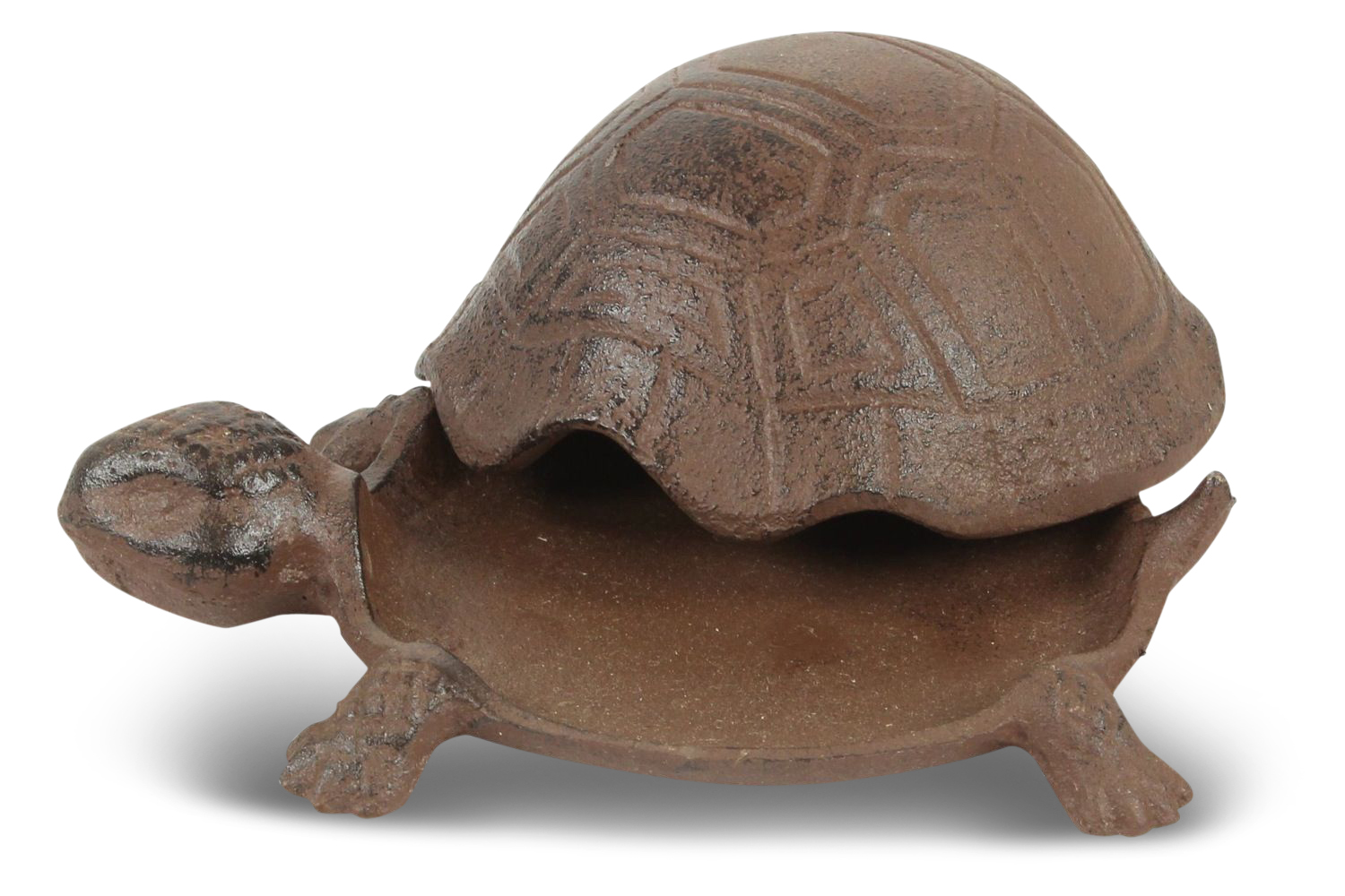 Best objet tortue en decoration pictures amazing house for Tortue decoration
