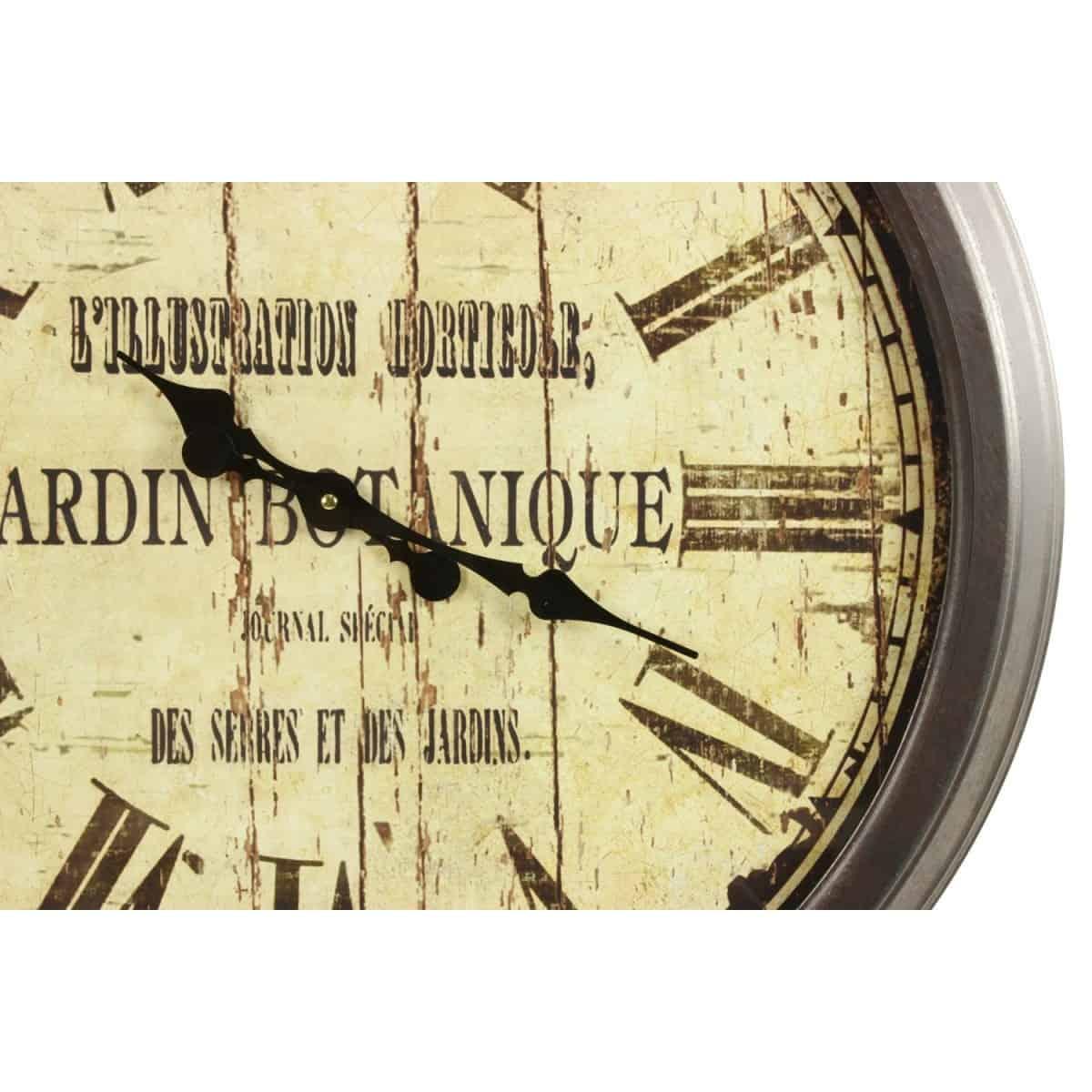 Grande Horloge Ancienne Murale Jardin Botanique 70cm